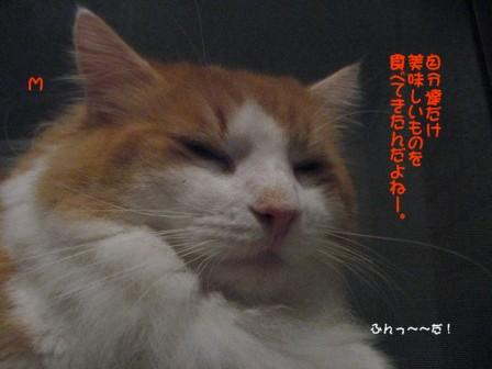 コピー ~ IMG_0089.JPG