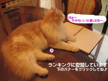 コピー ~ IMG_1057.JPG