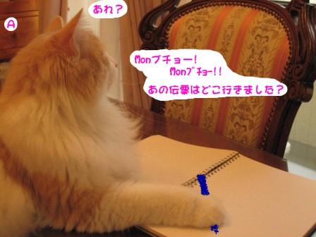 コピー ~ IMG_1062.JPG