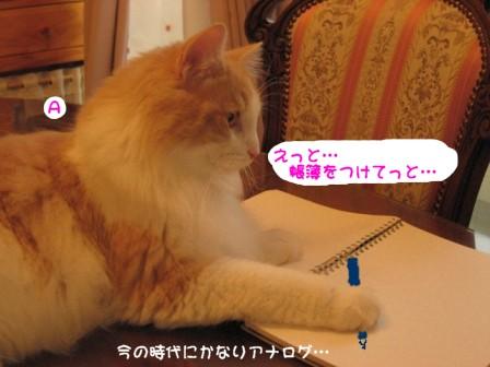 コピー ~ IMG_1063.JPG