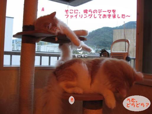 コピー ~ IMG_1607.JPG