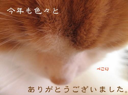 コピー ~ IMG_4074.JPG