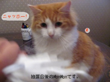 コピー ~ IMG_4624.JPG