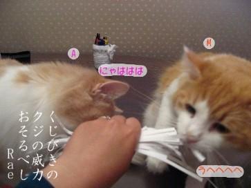 コピー ~ IMG_4630.JPG