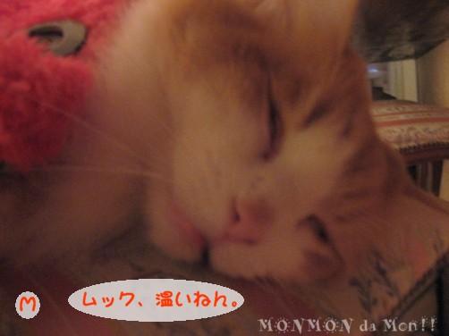 コピー ~ IMG_4661.JPG