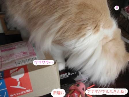 コピー ~ IMG_6983.JPG