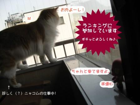 コピー ~ IMG_7001.JPG