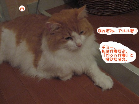 コピー ~ IMG_9849.JPG