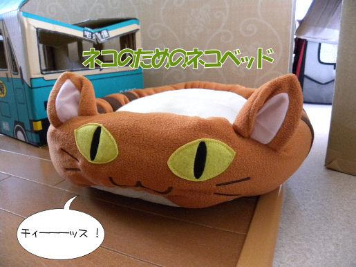ネコのためのネコベッド.JPG