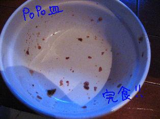 ポポ皿.JPG