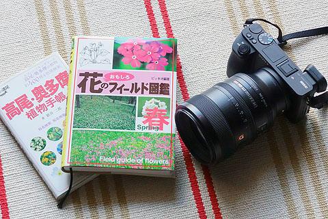 TAKAO-02.jpg