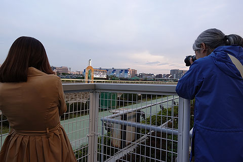ooikeiba-03.jpg