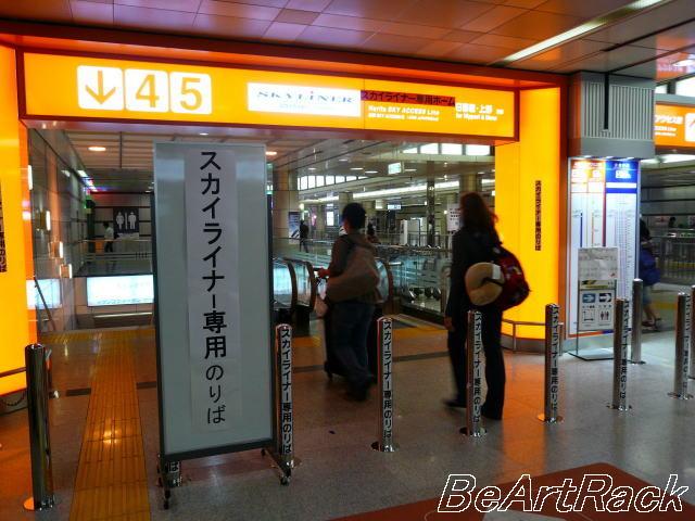 2010.8.8(月) P1120670.JPG