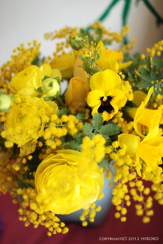 Flower_003.jpg