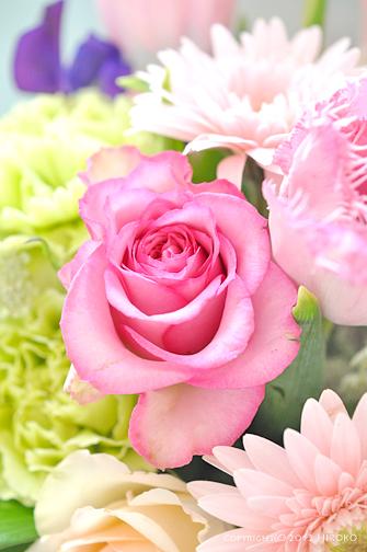 Flower_007.jpg