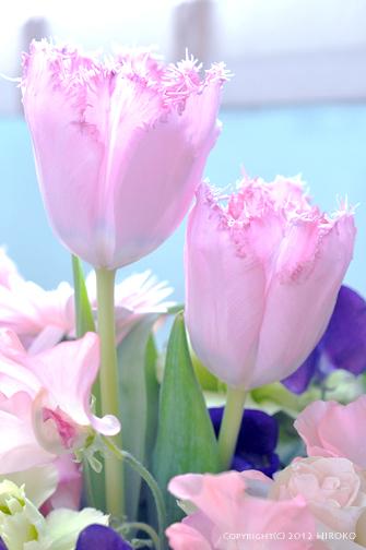 Flower_008.jpg