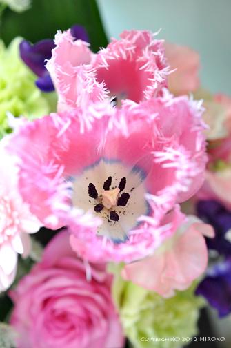 Flower_018.jpg