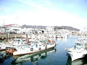 観音寺港全景