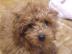 hiro_さんの画像
