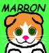 マロンのとうニャンさんの画像
