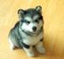 nishikenさんの画像