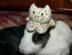 masahiro3さんの画像