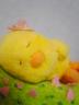 piyoさんの画像