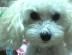 chiekoさんの画像