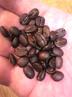 beansさんの画像