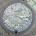 bigfish55cm