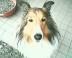 yukiさんの画像