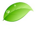 Leafさんの画像