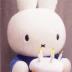 杏奈さんの画像