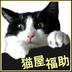 猫屋福助(株)さんの画像