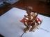 ダンボール戦機プラモさんの画像