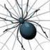 坂の上の蜘蛛さんの画像