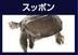 kokode-miruさんの画像