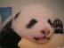 ERI+C★Sさんの画像
