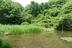 環境保全は大倉満さんの画像