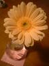 桂花さんの画像