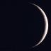 月うさぎさんの画像