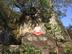 chage_yogaさんの画像