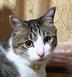 hirokoさんの画像