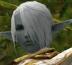 satoruiさんの画像