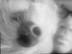 michiさんの画像