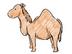 ラクダさんの画像