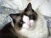 ARIRAGUさんの画像