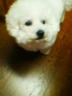 yunmoさんの画像