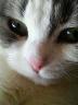 shun-aさんの画像