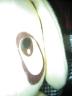 psyshuさんの画像
